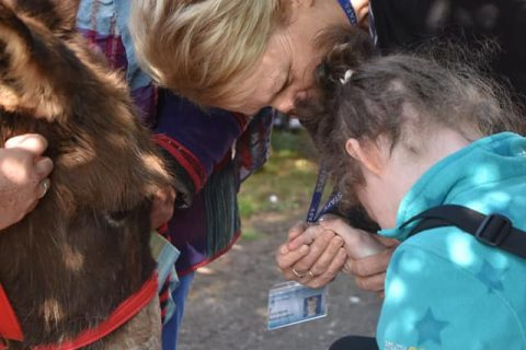 student interacting with a donkey