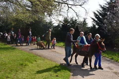 students and staff walking the site with animals