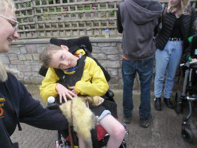 Student petting a ferrett